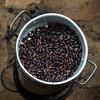 Fèves de cacao (johan masia) Tags: voyage viaggio viaje travel trip journey saotome saotomé colore color couleur colour