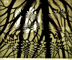 Rippled Surface (1950) - Maurits Cornelis Escher (1898-1972)
