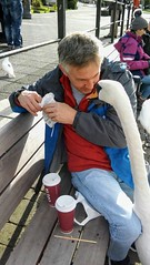 Give me some pie !Not strictly my photo but I am the human subject of the photo (Andrew-Jackson) Tags: swan wildlife nature funnyphotos closeup