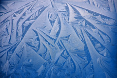 Blue world of ice flowers (Liwesta) Tags: frost frozen ice flowers blue cold structures abstract