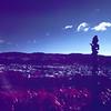 SCN1567 (Doug Golupski) Tags: hasselblad newzealand 500c zeiss colorinfrared colorir infrared ir film fpp filmphotographyproject kodak aerochrome slidefilm