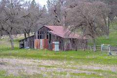 DSCF5345.jpg (RHMImages) Tags: path landscape decay 135mm35mm nevadacounty rust manualfocus fujifilm trees rusted chinon vintagelens fuji road xt2 grassvalley barn fence