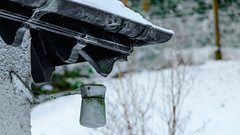really just playing with a lens (and thinking the house needs repainting!) (grahamrobb888) Tags: nikon nikond800 d800 nikkor afnikkor80200mm128ed bokeh birnamwood birnam cold home house homegarden frost frosty garden snow snowwoods light perthshire winter