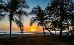 Sonnenuntergang über dem Pazifik (matthias_oberlausitz) Tags: samara costa rica pazifik westküste westcoast meer palmen sonne sonnenuntergang strand mittelamerika centroamerica amerkika america