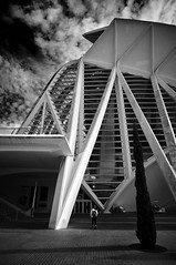 Big ! (elgunto) Tags: architecture valencia people street museum science building blackwhite bw monochrome highcontrast light silhouette lines perspective sonya7 nikon2035 nikkor manuallense