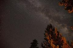 DSC_4415 (jfahlsing63) Tags: yellowstone grandteton glendowy eclipse