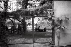 ամառ թէ աշուն 2013։ (նորայր չիլինգարեան) Tags: canoscan9000fmarkii kodakcft lab25 mamiyaze2 mamiyasekore50mm17 թբիլիսի ժապաւէն լուսանկարներ բակ