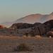 Desert Quiver Camp sunrise