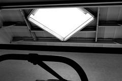 P2020167 (photos-by-sherm) Tags: michelangelo bust david replica cameron art museum wilmington nc pancoe center winter spotlight floodlights kissing