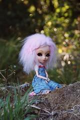 Victoire (Alluka Zoldyck) Tags: pullip pullips doll dolls custo custom stock papin rare jun planning junplanning japan alluka portugal france zoldyck
