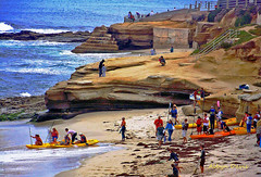 La Jolla (albyn.davis) Tags: people beach water ocean blue brown colors colorful vacation travel usa california