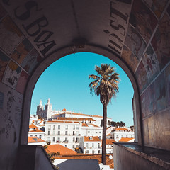 A day in Lisbon (MooziX) Tags: afternoon arch architecturalelement architecturalphotography blue buildings church city cityscape clear daytime explore exterior frontview lisbon morning orange palm portugal religious residential rooftops sky streetphotography temple travel tree urbanphotography wanderlust warm white