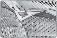 Structure (michael_hamburg69) Tags: valència spain spanien valence espagne ciutatdelesartsilesciències ciudaddelasartesylasciencias stadtderkünsteundderwissenschaften cityofartsandsciences architekt architect santiagocalatrava félixcandela españa museum