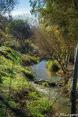 Rio frio (josmanmelilla) Tags: granada españa campo naturaleza rio verde sony azul cielo pwmelilla flickphotowalk pwdmelilla pwdemelilla