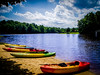 Lonely Kayaks (Randall ] [ Photography) Tags: epl1 kayak nc northcarolina olympus us unitedstates amazing beautiful blue colors green interesting kayaks lake landscape nature nice outdoor outdoors park photo photographer photography pic picture relax relaxing river sand sky sport sports tree trees waterscape whitsett