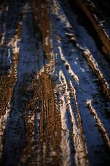 20180206-L1003494 (Rene_1985) Tags: leica m 9 m9p rangefinder messucher 50mm 095 asph noctilux winter cold kalt