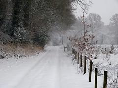 When it was white (joeke pieters) Tags: 1370578 panasonicdmcfz150 woold winterswijk achterhoek gelderland nederland netherlands holland sneeuw snow snowscape hek fence hff landschap landscape landschaft paysage ngc
