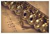 Virgule (marc.lacampagne) Tags: dof canon tamron musique instrument note