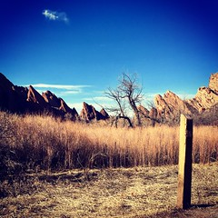 Gorgeous day for a hike on #303day (crazyred04) Tags: 303day rocks trees canyon frontrange 303 sunny playoutside photographer nature trail redrocks sandstone park statepark state roxborough denver outdoors getoutdoors getoutside hiking hike colorado mountain sky landscape grass valley fence