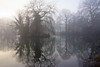 Weeping Willow on a misty winter Morning at sunrise - Dordrecht 2018 (Wilma v H- thanks 4 U'r lovely comments/faves!) Tags: 2018 winterscenics winter fog foggy mist misty weepingwillow treurwilg trees silhouetttes essenhofcemetery begraafplaatsdeessenhof ponds lakes reflections plants dordrecht nederland netherlands zuidholland sunrise luminositymasks tkactionsv5v6panel canoneos60d outdoors