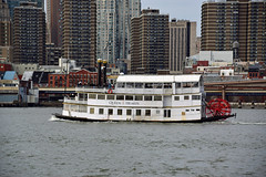 Queen of Hearts (thoth1618) Tags: ny nyc newyork newyorkcity brooklyn manhattan eastriver river water buildings boat paddleboat queenofhearts tourboat tour photooftheday