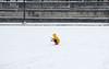 9 februari 2018, Parijs (Gijsbert van der Wal) Tags: placedelaconcorde snow neige paris snowball