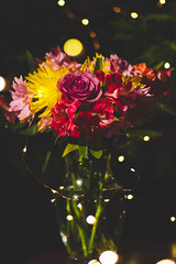 Flowers (JoshNaround Photography) Tags: fairy lights flowers canon 7d 50mm f18 night time boredom