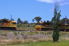 5021 and 5043 about to cross each other at the Hunter River bridge at Sandgate (bukk05) Tags: 5043 railpage:class=130 railpage:loco=5021 rpaunsw5020class rpaunsw5020class5021 5021 railpage:loco=5043 rpaunsw5020class5043 qrn qrnational wagons explore export engine railway railroad railpage rp3 rail railwaystation railwaystations train tracks tamron tamron16300 trains unitedgrouplimited photograph photo loco locomotive horsepower hp hunter huntervalley ge ge7fdl16 flickr freight diesel dieselelectriclocomotive station standardgauge sg spring 2017 australia artc aurizon aurizoncoal canon60d canon coal coaltrain c44achi mainline nsw newsouthwales newcastle cityofnewcastle sandgate hunterriver