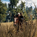 The Witcher 3: Wild Hunt / Through The Fields