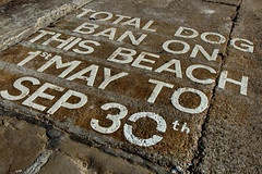 Dog Ban  (Explore 20/02/18) (only lines) Tags: dog sign each ban margate kent thanet