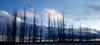 2018-02-12-80_296 (Mbel1968) Tags: cielo sky color paisaje mobil 2018 exterior