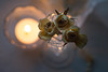 By Candlelight (Captured Heart) Tags: rose yellowroses candlelight crystal sparkle shine glow driedflowers dreamy