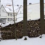 Harz-Oderbrueck_e-m10_1012063991 thumbnail