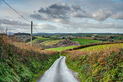 A Cornish Narrow Lane - Rural Cornwall. (john lunt) Tags: english cornish narrow country lane high hedgerow green rolling countryside rural patchwork farmland winter colour color tree trees woodland valley fowey cornwall england uk britain vivid vibrant colourful colorful verdant greens horizontal landscape hdr tone mapped johnlunt john lunt uncompressed raw sony alpha a7r2 zeiss 55mm f18 za prime lens