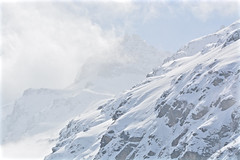 Parco Nazionale Gran Paradiso - Valle d'Aosta (Photo by Lele) Tags: stambecco animali camosci camoscio gran paradiso aosta alpi italia natura parco naturalista maini daniele granparadiso nikon pixcube fotografia photo montagna mountain panorama landscape escursione paesaggio paesage nature alps alpen photography escursioni trekking excursion hiking tourism turismo vacanze vacanza holiday tour trip fotografo adventure
