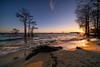 Lake Waves [EXPLORED] (Travis Rhoads) Tags: 2018 sonyilce7rm2a7rii voigtlanderultrawideheliar12mmf56asphericaliii reallyrightstuff ba72l bh55 rrspcl01 tvc33 coastal coastline goldenhour landscapephotography nikcollectionbygoogle waves sunrise dawn sunstar textures thegoldenhour trees cypresstree copyright2018 travisrhoadsphotography water southcarolina lakemoultrie cypresstrees