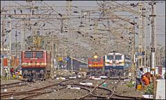 Massive Itarsi Junction (Abhishek Jog) Tags: et wap4 22836 powering 12486 sgnrned sf express greets 25035 wdp4b 40061 massive itarsi junction jn from bpl bhopal bhopaljn towards knw khandwa emd