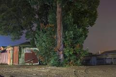 (VLinkphoto) Tags: night photography nightphotography rural country farm countryside nature outdoor canon6d rokinon35mmf14 rokinon35mmf14umc rokinon
