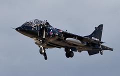 Harrier T4N (Bernie Condon) Tags: bae harrier t4n fighter attack military warplane navy royalnavy rn vstol trainer tinwing 899nas hmsheron yeovilton rnas royalnavyairstation airfield
