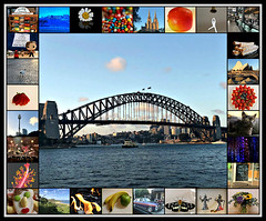 2018 January photos collage (dominotic) Tags: 2018 food fruit confectionery dessert 2018januaryphotoscollage apple banana strawberrypavlova doctorwho onering facebiscuit lotr sydneyharbourbridge sydneyoperahouse sydneyharbour pinkhibiscus strawberry bird australianwhiteibis ringthebell purplefordfalcon bateaubay paulwellerconcert gelatocakes daisy stmaryscathedral freckles tramsheds miathecat flowerbouquet butterfly flame centrepointtower apricotcoconutlogs sydney australia collage