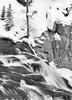 Fast Flowing (maureen.elliott) Tags: 7dwf blackandwhite waterfall nature outdoors yellowstonepark wyoming rock rockface winter river water