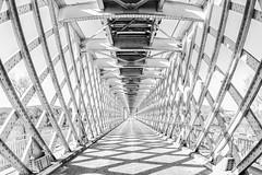 Perspectiva (sairacaz) Tags: puente bridge tui valença españa portugal canon eos550d samyang 8mm fisheye ojodepez perspectiva