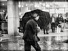 the.downpour.part.I (grizzleur) Tags: street streetphotography rain blur blurryshot omd omdstreetphotography olympusomdem5mkii water pouring contrast highcontrast kitlens umbrella action dynamic candid candidphotography olympusm1250mmf3563 downpour