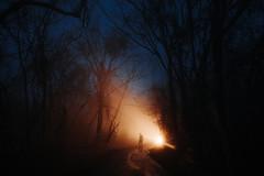 Dreamwalking (Nate Bittinger) Tags: nate bittinger maryland night fog car headlights silhouette