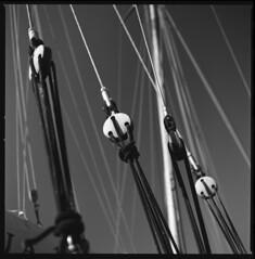 rigging (ukke2011) Tags: hasselblad503cw planarcfe8028 foma100classic fomapan selfdeveloping rodinal 150 film pellicola 6x6 square 120 bw blackandwhite mediumformat analog analogico harbor porto sailboat barcaavela