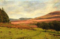 The High Moors (maureen bracewell) Tags: yorkshire landscape sheep path hills moorland heather clouds texture trees nature maureenbracewell cannon walking sunshine