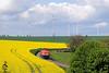 WLE 62 | Drewer | 04.05.2009 (Tobias Reisky) Tags: wle westfälischelandeseisenbahn sauerland warstein drewer raps rapsfeld g1600 makg1600 haarstrang möhnetal