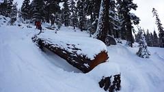 Max Logride (benjaminfish) Tags: heavenly ski lake tahoe california kid jump snow winter january 2018