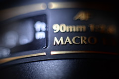 Macro (Henry Ash) Tags: nikon nikkor d610 50mm kenko torch flash tamron 90mm extension tubes rings