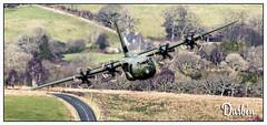 Photo of C130 Hercules (Jigsaw 1) (17)